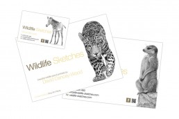 Graphic Design Bournemouth, Poole, Christchurch, Dorset